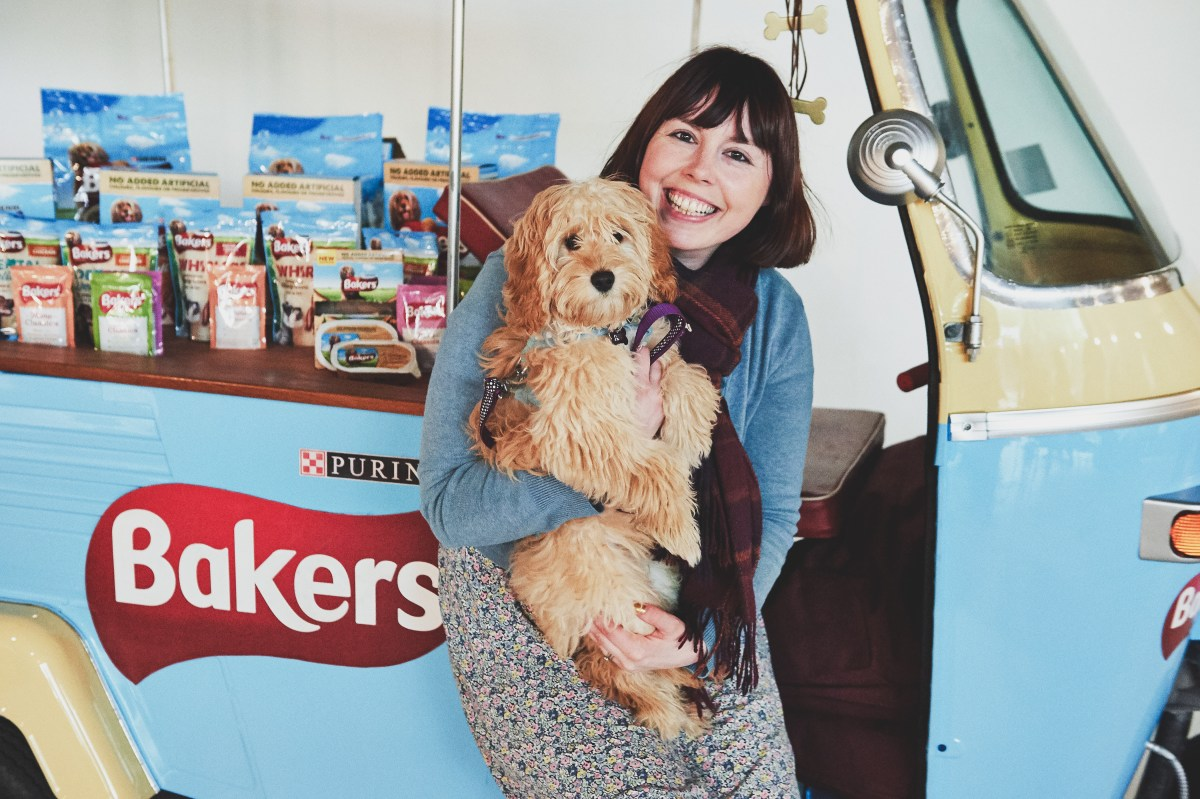 Doggyhood // Bertie's First Trip to London with Bakers #Ad